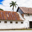 Suriname, South America — Stock Photo #69223257