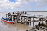Suriname, South America — Stock Photo