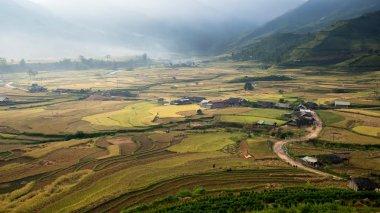 Rice fields on terrace in rainy season at Mu Cang Chai, Yen Bai, Vietnam