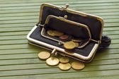 Women wallet — Stockfoto