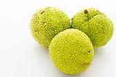 Małpa mózg owoców — Zdjęcie stockowe