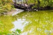 Wooden bridge collapsed — Stock Photo