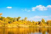Autunno fiume ural — Foto Stock