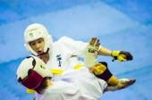 Open karate tournament kiokusinkaj — Stock Photo