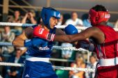 Fight boxers — Stok fotoğraf