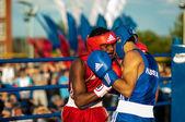 Fight boxers — Stock Photo