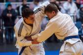 Two judoka — Foto de Stock