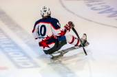 Game in ice sledge hockey — Fotografia Stock