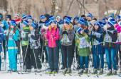 Cross-country skiing, — Foto de Stock