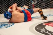 Two MMA fighter — Zdjęcie stockowe