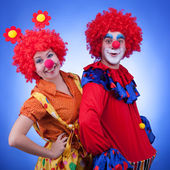 Clowns on blue background studio shooting — Stock Photo