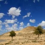 Negev Desert . Mountain  Avdat with antic  Nabatean city — Stock Photo #66682289