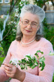 Portrait of an elderly woman beautiful — Stock Photo