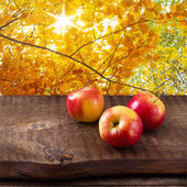 Apples on wooden table over autumn landsape — Stock Photo