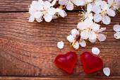 Flowering branch with white delicate flowers on wooden surface. — Stock Photo
