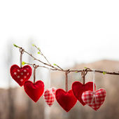 Valentine day love beautiful. Heart hanging on branch of tree — Stock Photo