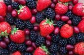 Berries, summer fruit on wooden table. — Stockfoto