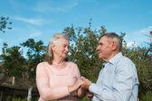 田舎でお互いを受け入れて年配のカップル — ストック写真