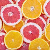 Tropical fruit cut circles as background — Foto de Stock
