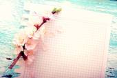 Wedding background. Flowering branch of cherry and paper — Stock Photo