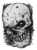 Skull Sketch — Stock Vector