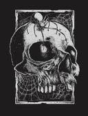 Black Widow and Skull — Stock Vector