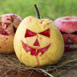 Chinese pear and apple for halloween on hay — Stock Photo #56249329