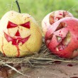 Chinese pear and apple for halloween on hay — Stock Photo #56249359