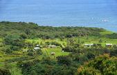 Exotic coastline of Hawaii — Stock Photo