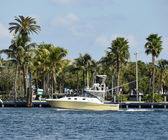 Motorboat in tropical Florida — Stockfoto