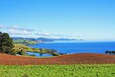 Tasmania top end — Stock Photo