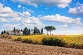 Landscape with farm — Stock Photo