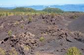 Etna volcanic landscape — Stock Photo