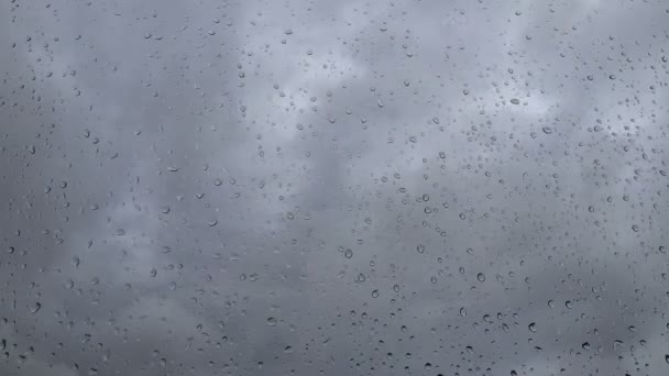 Drops on the glass in cloudy weather — Vídeo de stock