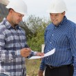 Two architects checking specifications — Stock Photo #56492705