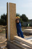 Builders positioning an upright wall panel — Stock fotografie