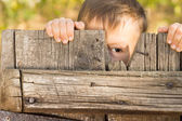Little boy playing peek a boo — Stock Photo