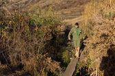 Scout or ranger crossing a log bridge — Stock Photo