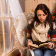 Young woman sitting reading at Christmas — Stock Photo #58733599