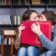 Young Sweet Couple Kissing Behind a Red Book — Stock Photo #68607473