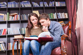 Sweet Young Couple on a Chair Reading Literature — Stock Photo