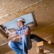 Builder Inspecting Skylight in Unfinished House — Stockfoto #74801589