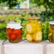 Jars of Preserved Vegetables on Garden Wall — Stock Photo #74804413