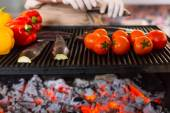 Fresh Vegetables Roasting on Outdoor Grill — Stock Photo
