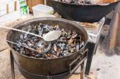 Large Pot of Hot Steaming Mussels — Stock Photo