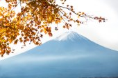 Fujisan — Stock Photo
