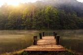 Wooded bridge — Stock Photo