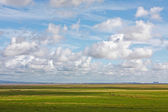 Flat river estuary landscape — Stock Photo