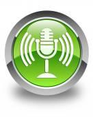Mic icon glossy green round button — Stock Photo