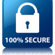 100 Percent Secure (padlock icon) glossy blue reflected square button — Stock Photo #56449303